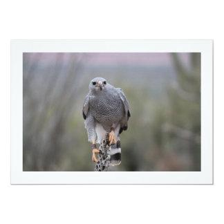 Falcon on Cactus 13 Cm X 18 Cm Invitation Card