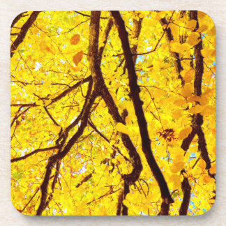 Fall branches - golden yellow coaster