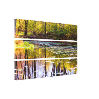 Fall Color Reflection 3889 Canvas Print