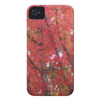 Fall Colors in Napa, California Case-Mate iPhone 4 Case