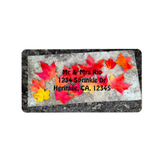 Fall Colors Maple Leaves Address Label