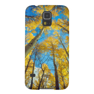 Fall colors of Aspen trees 2 Galaxy S5 Cover