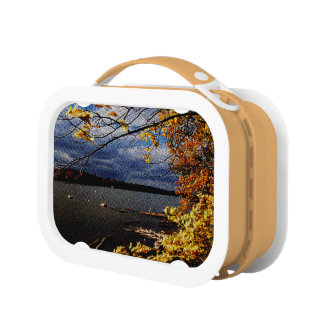 Fall Colors, Overhanging Tree by water Lunchbox