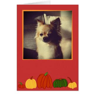 Fall Pumpkins: Customized Greeting Card #3