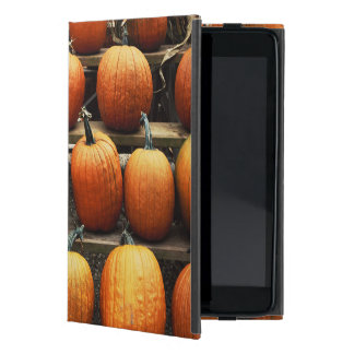 Fall pumpkins iPad mini case