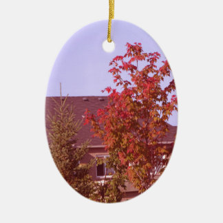 FALL Tree Oakville Ontario Gifts Shirts Christmas Ornament