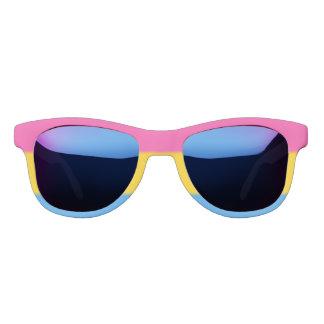 Falln Pansexual Pride Flag Sunglasses