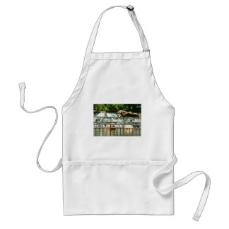 Falls on the rocks aprons