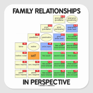 Family Relationships In Perspective (Reunion) Stickers