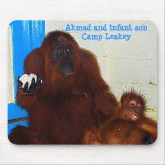 Famous Animal Orangutan Mother and Baby Mouse Pad