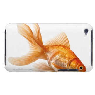 Fancy Goldfish Barely There iPod Case