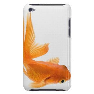 Fantail goldfish (Carassius auratus) 2 iPod Touch Cases