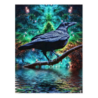 Fantastic Night Raven Postcard