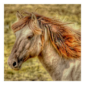 Fantasy Horse Print