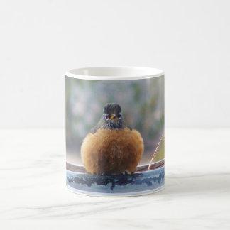 Fat Robin Coffee Mug