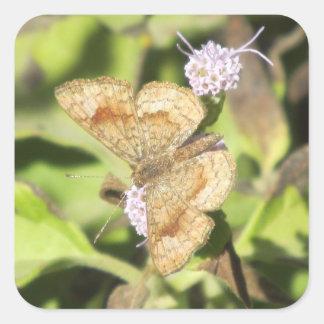 Fatal Metalmark Butterfly Stickers