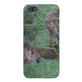 Fawn iPhone 5/5S Cases