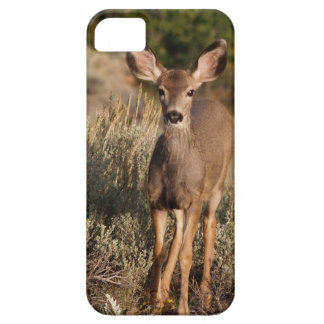 Fawn iPhone 5 Case For The iPhone 5