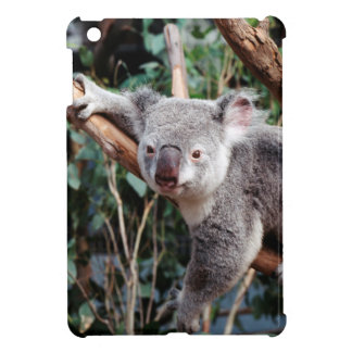 Featherdale Wildlife Park, Koala Bears iPad Mini Case