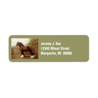 Feathers Clydesdale Draught   Horse Address Labels