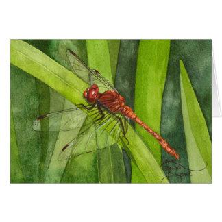 February Dragonfly Card
