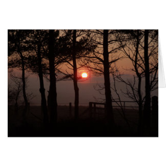 February Evening Card