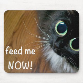 feed me NOW! Mouse Pad