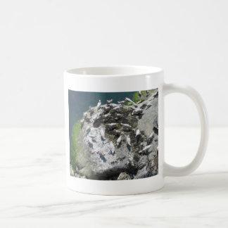 feeding gulls coffee mug