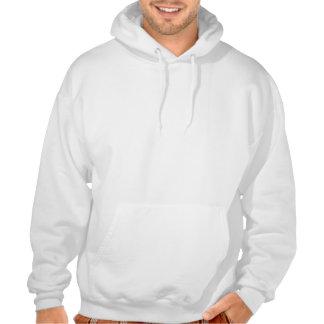 Feeding sheep in winter hoodies