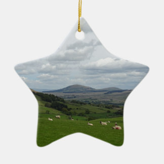 fell view phone cover ceramic star decoration