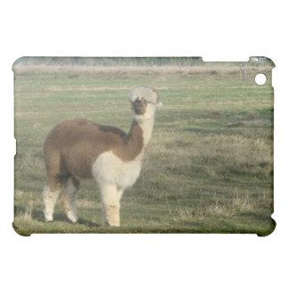 Female alpaca cover for the iPad mini