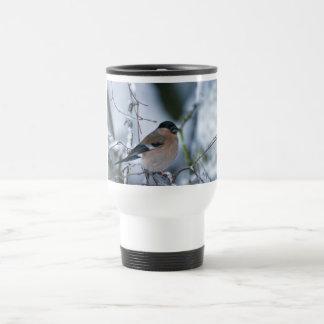 Female Bullfinch Mug