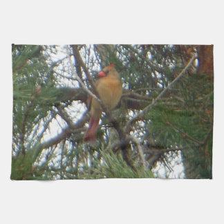 Female Northern Cardinal Pine Tea Towel