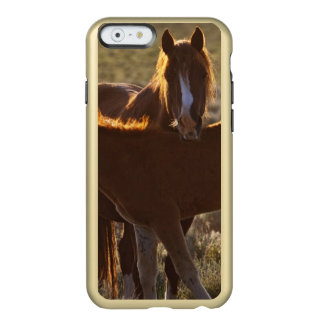 Feral Horse Equus caballus) adult and colt in Incipio Feather® Shine iPhone 6 Case