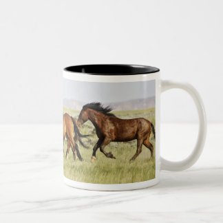 Feral Horse Equus caballus) herd of wild Two-Tone Coffee Mug