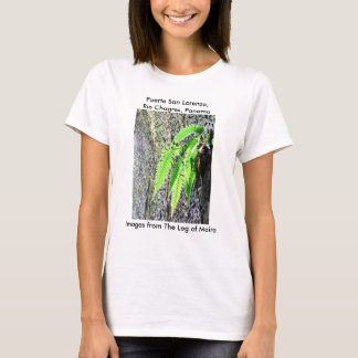 Fern, Fuerte San Lorenzo, Rio Chagres, Panama T-Shirt