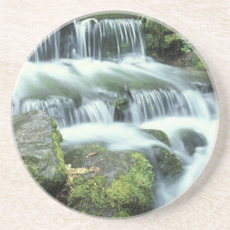 Fern Spring, Yosemite National Park Coaster