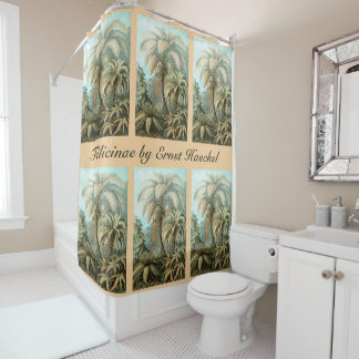 Ferns, Filicinae by Ernst Haeckel, Vintage Plants Shower Curtain