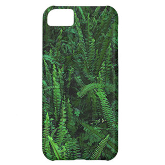 Ferns with Clover iPhone 5C Case