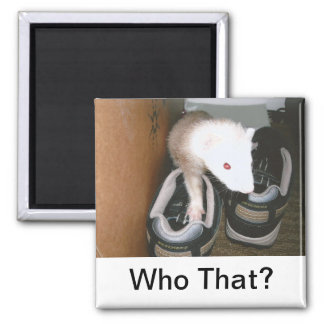 Ferret And the shoes Square Magnet