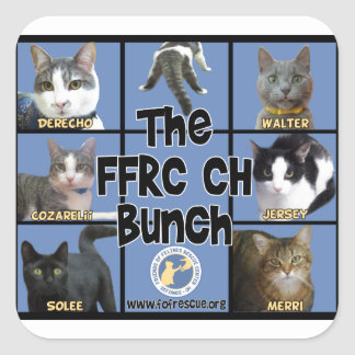 FFRC CH Bunch Square Sticker