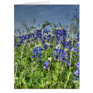 Field of Bluebonnet Greeting Cards