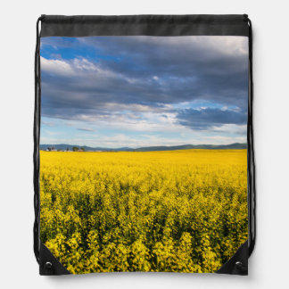 Field Of Canola In Late Evening Light Backpacks