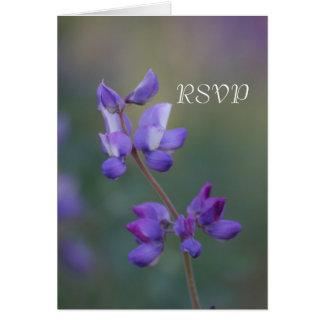 Field of Lupine RSVP Card