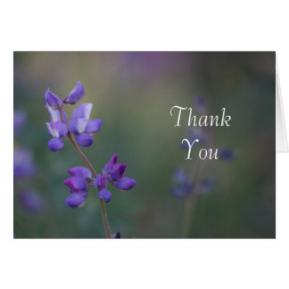 Field of Lupine Thank you Card