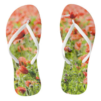 Field of poppies jandals