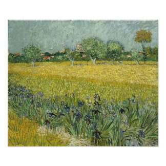 Field with Flowers Near Arles by Vincent Van Gogh Photo Print