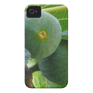 Figs iPhone 4 Cases