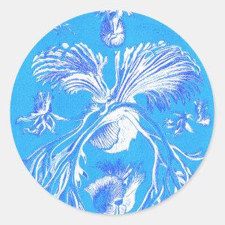 Filicinae on Blue Background Classic Round Sticker