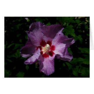 Finnish-Hyvää Syntymäpäivää-purple flower Greeting Card